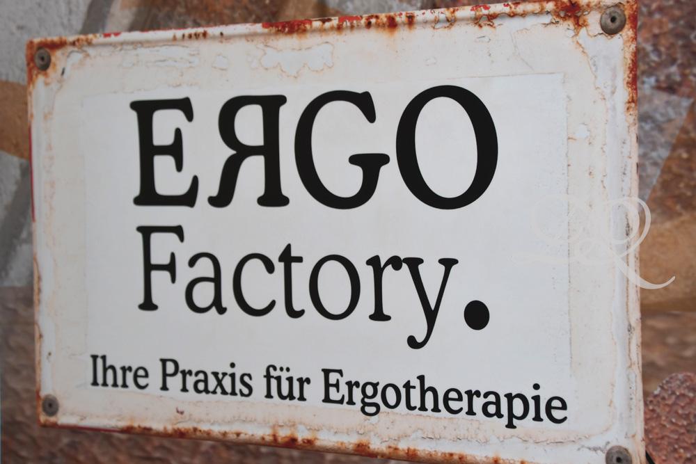 ergo10.jpg